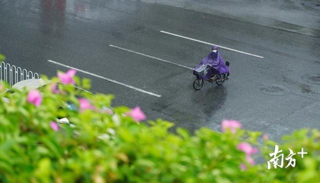 """台风""""森拉克""""登陆越南,广州暴雨天""""太阳雨"""""""