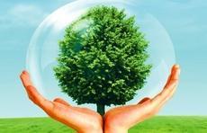 济南市保险行业协会行业规范建设深化年工作简报