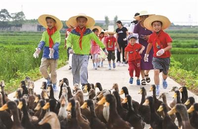 江宁汤山阜庄村:体验农事乐趣 品味农耕文化