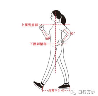 还在晒步数?北京疾控提醒您降级后这样健步走才科学