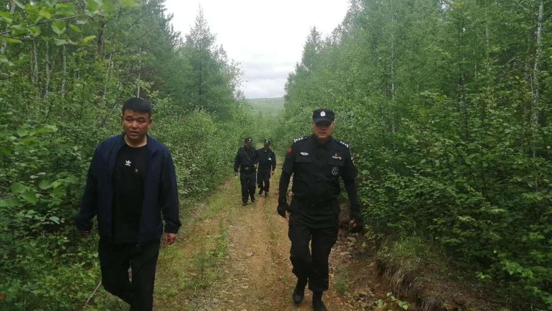 塔河林业局盘中管护区严厉打击野生蓝莓掠青行为
