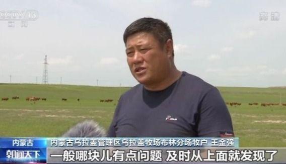 走向我们的小康生活丨内蒙古牧民足不出户通过手机查看牛群 种子数据库助力修复草场