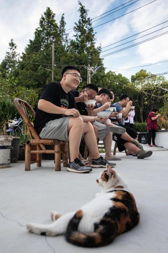 村里的夜生活能有多丰富?这些白领傍晚种菜撸猫打篮球,晚上烧烤啤酒看电影