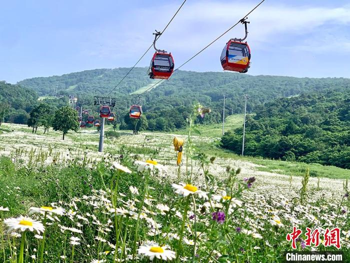 吉林市开放8家A级景区:游客体验夏日之美——旅新网
