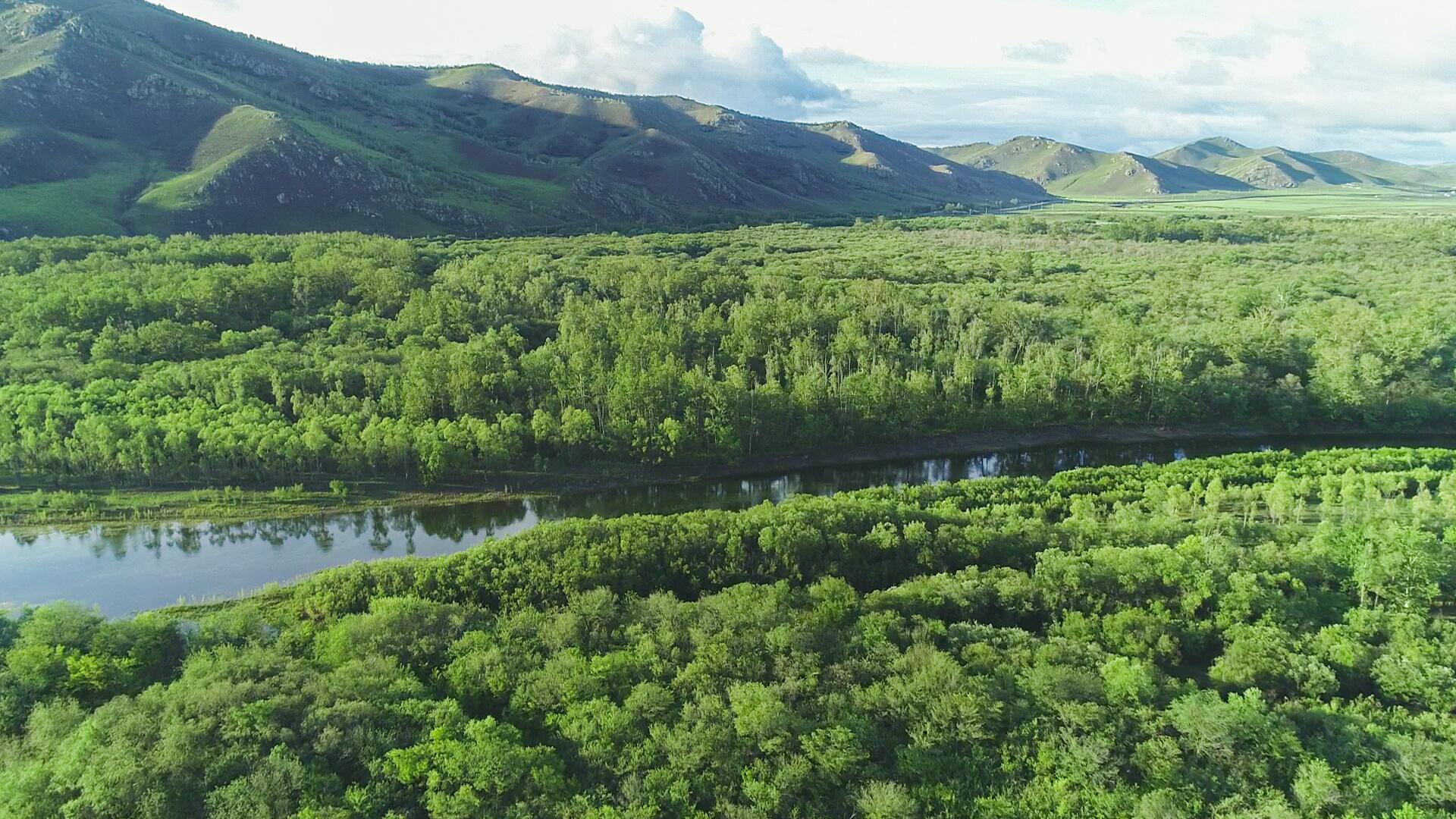 【幸福花开新边疆】额尔古纳国家湿地公园:河作青罗带 苍翠林幽深