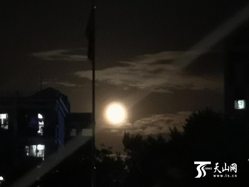 十五的月亮十四圆 皎皎月光匆匆过