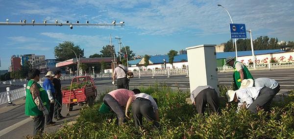 新蔡县城市管理局集中开展绿化带除草和水域保洁等工作