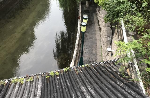 突发!济南青龙桥下发现一男性死者