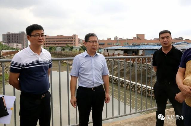 东坑镇领导王业宽巡查内河,督导水污染治理工作