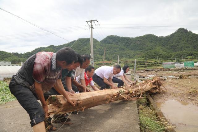 """磐安农商银行:""""三抓三保""""倾力帮扶群众台风灾后重建"""