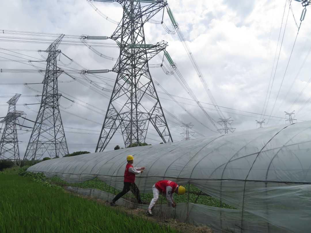 """抢修及时全部恢复供电 国网上海电力沉着应对台风""""黑格比"""""""