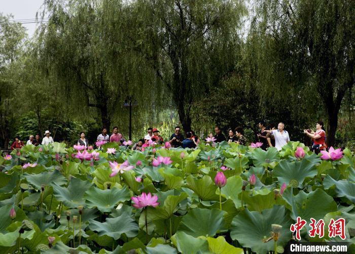 重庆铜梁:整治农村人居环境 开