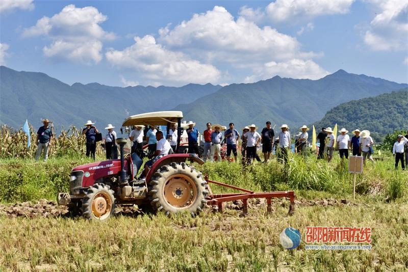 邵阳市玉米生产全程机械化获重大进展