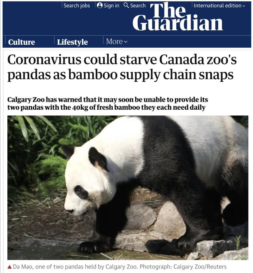 【亿兴会员注册】加拿大亿兴会员注册的熊猫要断图片