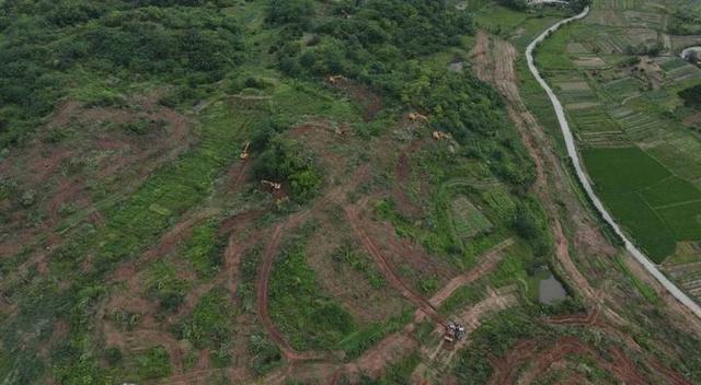 """30天完成800多亩土地流转测量,一天完成清表!九华乡多方助力百草园项目""""跑""""起来"""