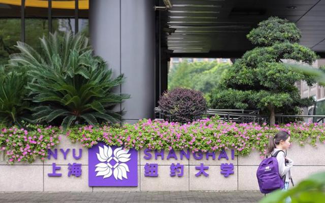 """这一届留学生在中国""""留美"""",中外合作办学成最大赢家?"""