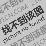 中超:广州恒大淘宝胜深圳佳兆业