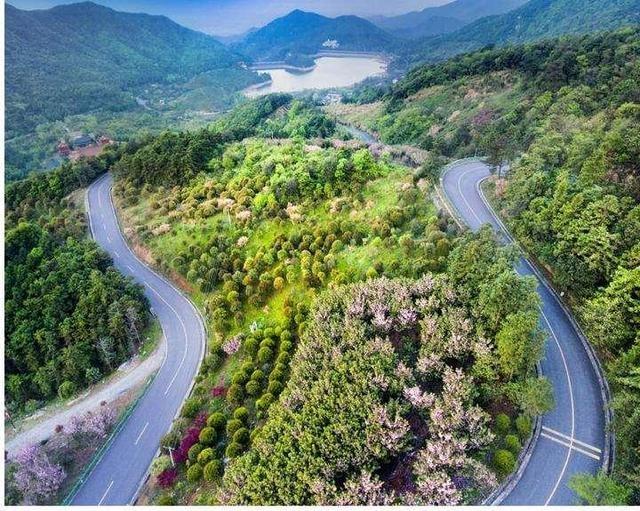 上山攻略看这里!金华山双龙景区多条道路将限行
