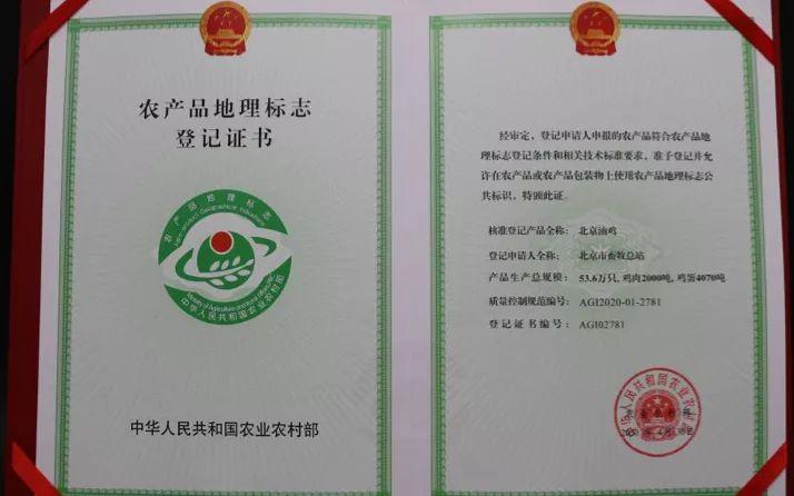 继北京鸭之后 北京油鸡获国家农产品地理标志