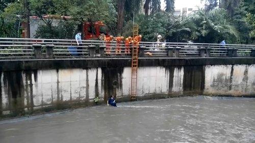 女子失足跌入河涌 消防迅速架梯救援