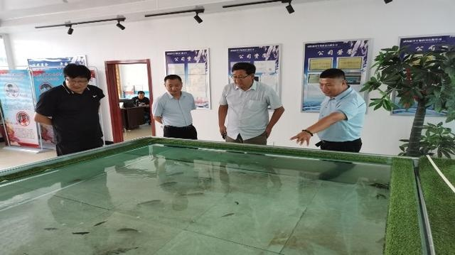 山东省渔技站领导到威海文登对水产养殖业绿色健康养殖情况进行调研
