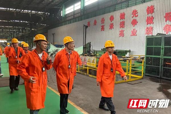湖南院士专家宁夏行丨 为宁夏冶金业发展注入活力