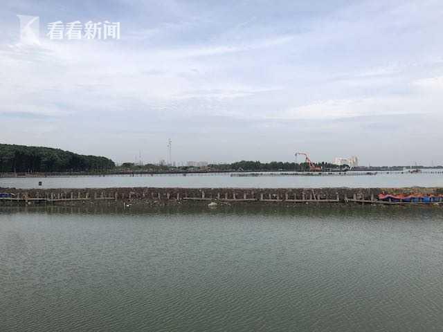 元荡生态岸线贯通工程示范段开建