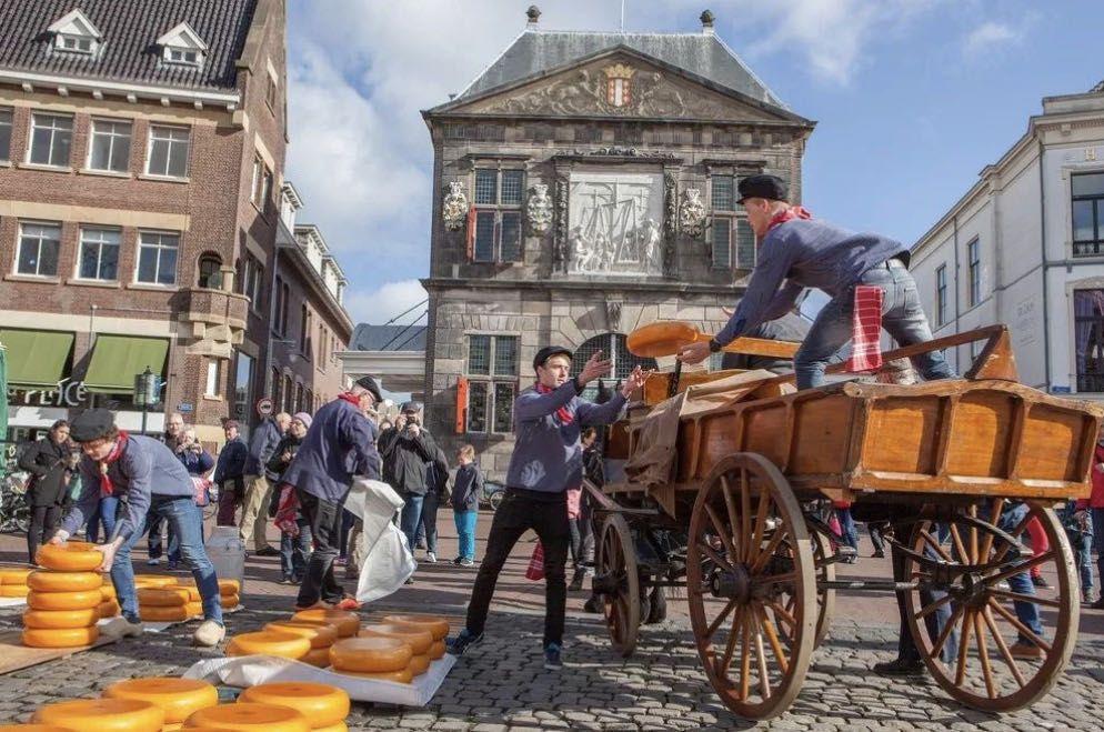 舌尖上的奶酪,在荷兰古镇赶一场传统市集