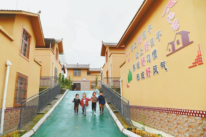 在广东佛山市对口帮扶下,甘洛县蓼坪乡建成高山蔬菜基地