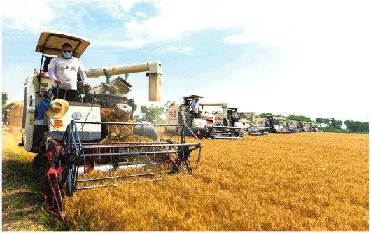 提升粮食安全保障水平扛稳粮食安全责任