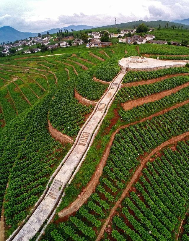四川会东县:以绿色发展理念引领农业供给侧结构性改革