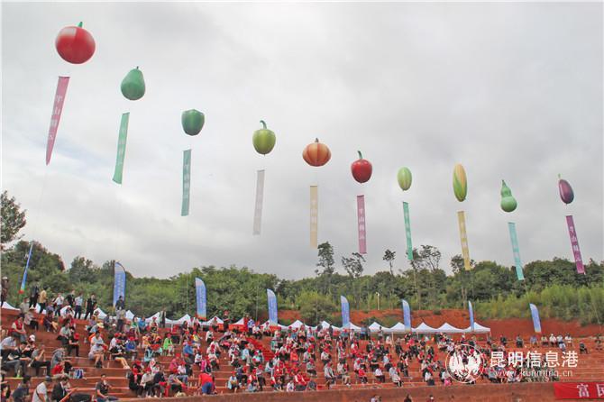 乡村旅游品质升级 富民县首届半山蔬菜园艺博览会精彩纷呈