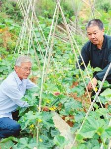 【一句誓言 一生作答】退休21载 植绿5000亩