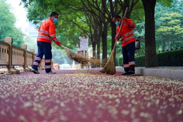 北京启动秋季周末卫生日 12万吨垃圾没了踪影