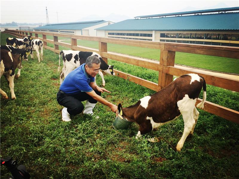 君乐宝乳业集团董事长魏立华:做好奶粉,就是我爱国的实现形式