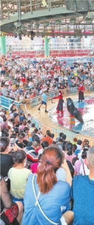 免票首日武汉景区人气高 黄鹤楼木兰天池客流量跳涨3倍
