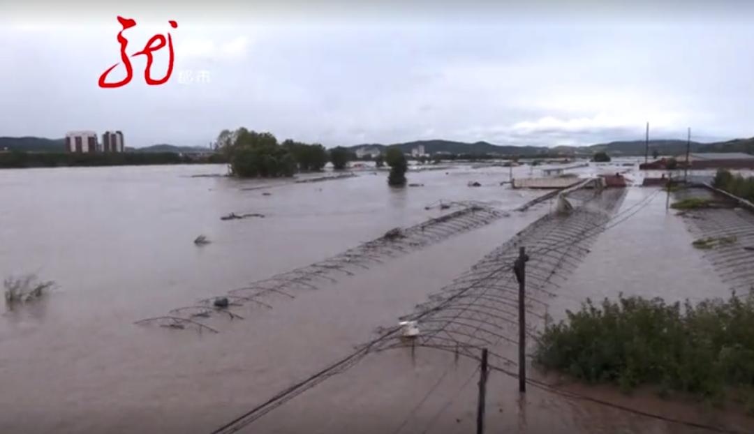 村庄、树木、蔬菜大棚几乎被淹没