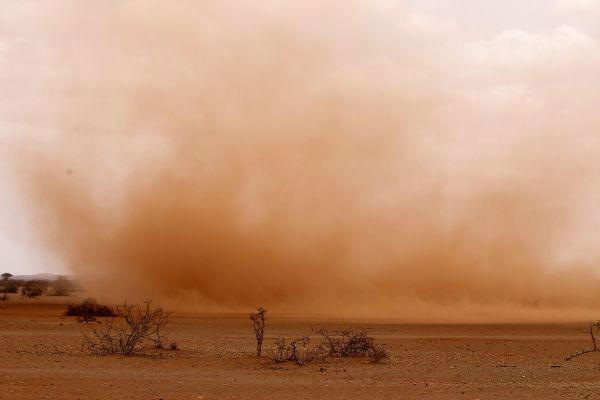 资料图:在埃塞俄比亚东南部靠近索马里边境的多洛阿多,风吹过干旱已久的大地,掀起沙尘。新华社