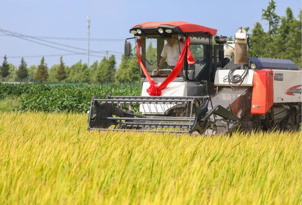 产业兴农村美农民富,提升乡村振