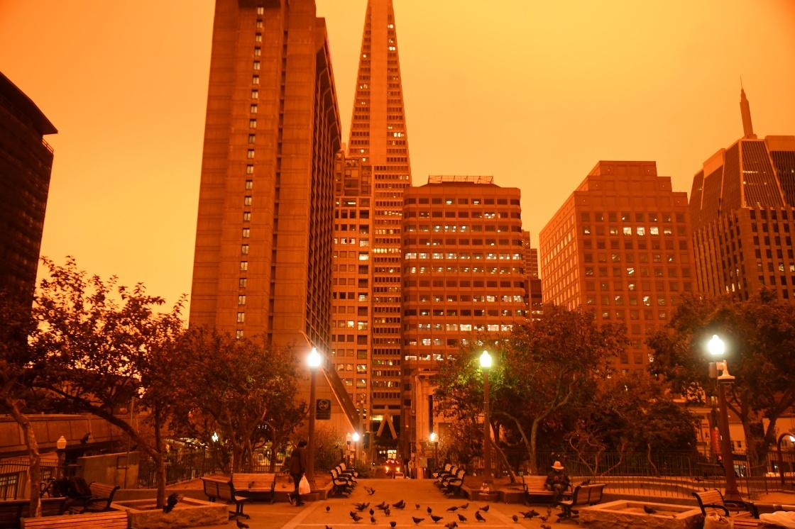 这是9月9日中午拍摄的美国加利福尼亚州旧金山街景。 新华社 图