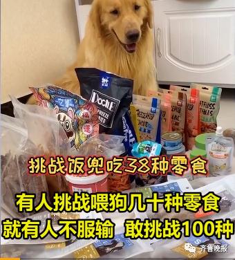 宠物博主让狗当大胃王,一次吃100种零食!网友怒斥(图1)