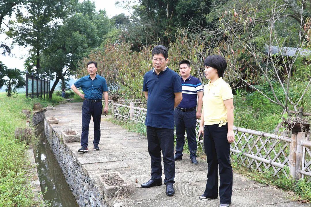 沭阳县委书记谢在个西乡兰家村观
