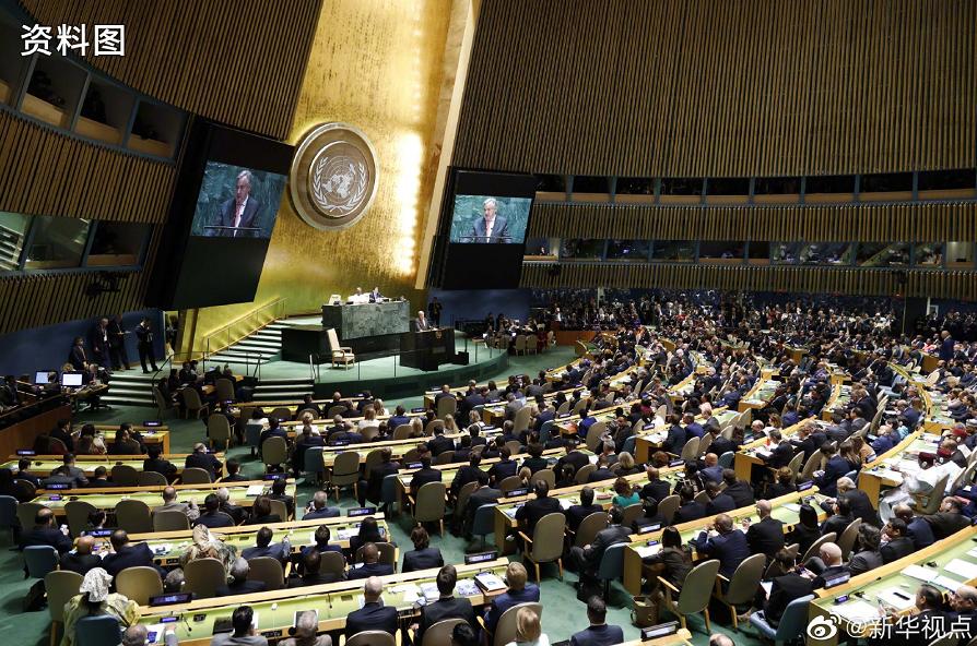 9月11日在位于纽约的联合国总部拍摄的联合国大会全体会议现场。图片来源:新华社