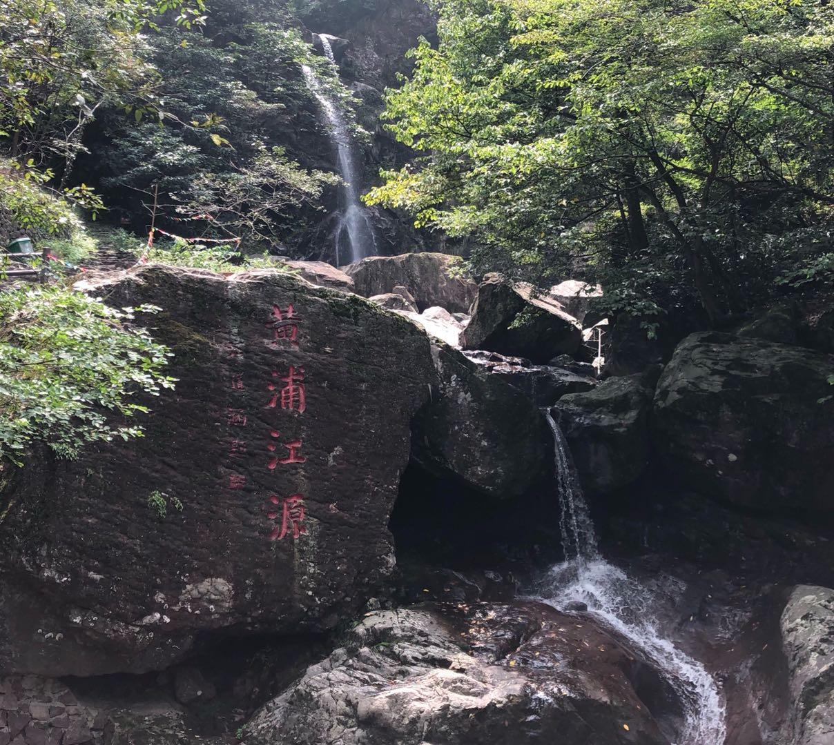 视频|浦江源里的一体化图片