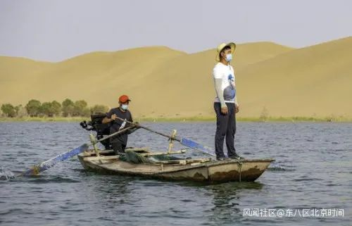 大沙漠里养大螃蟹 中国人做到了!图片