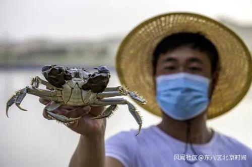 当地渔民展示收获的螃蟹