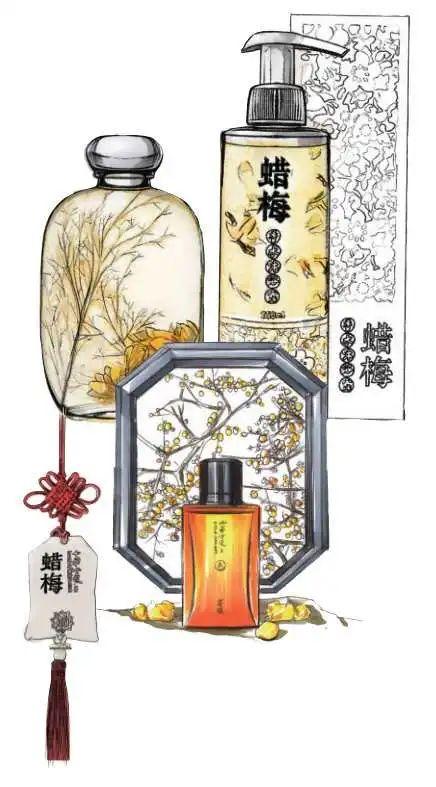 蜡梅系列产物画图:曹桂庭