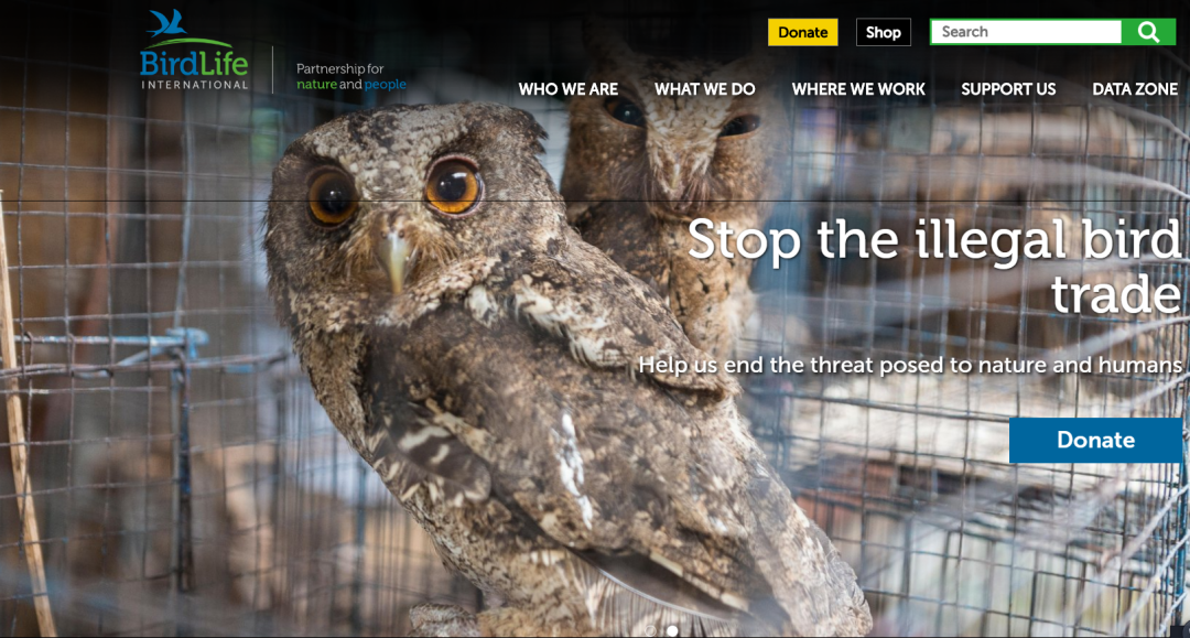 国际鸟盟官网首页截图