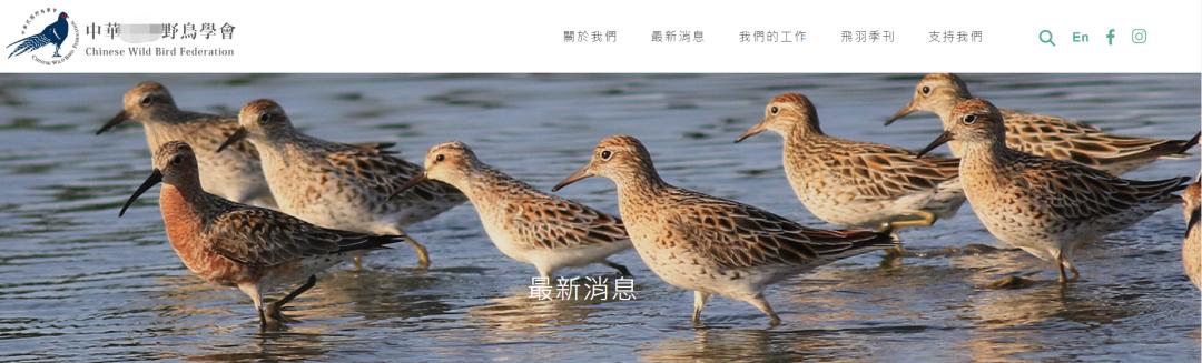 """中湾""""台""""鸟会华官网截图。"""