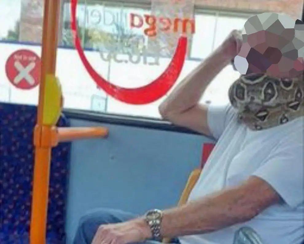 公交车上,他的口罩是一条活蛇!图片